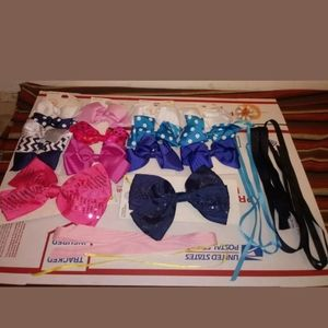 Lot Of Pony Girls Holder Bows/Hair Ribbons Clips